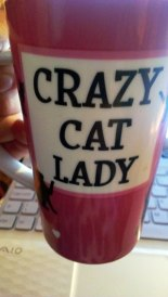 crazy-cat-lady mug