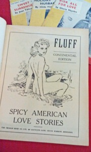 "Fluff magazine - open the page, and the stories turn  ""Spicy"". Interesting censorship."
