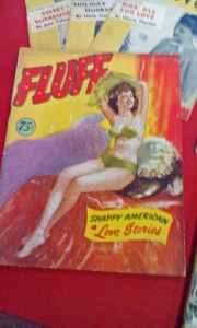 "Fluff magazine - on the cover, ""Snappy American  Love Stories"""